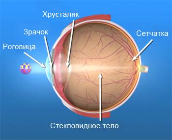 Как работает глаз?